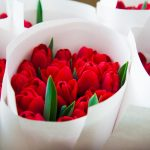 bouquets of red tulips