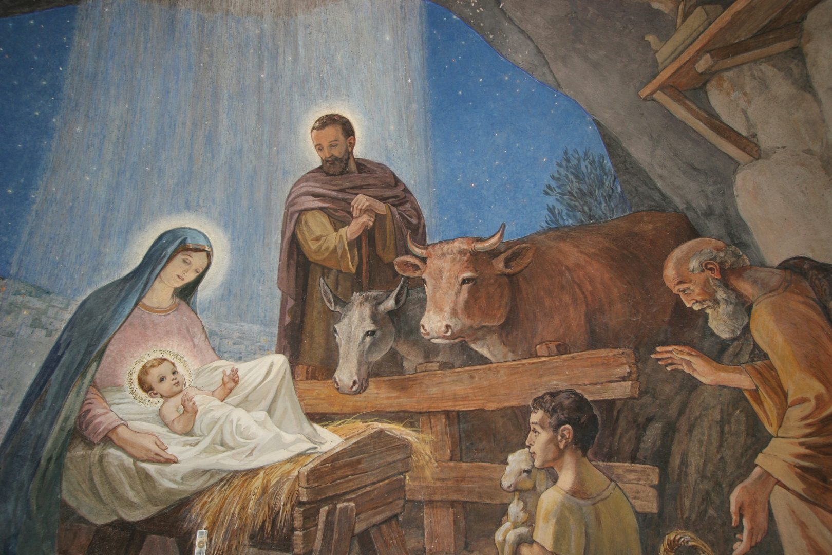 nativity scene of baby Jesus in stable